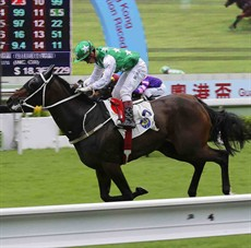 Pakistan Star in happier times ... winning with Matthew Chadwick aboard