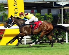 Southern Legend (near side) storms home to take the Class 2 Yip Fat Handicap (1200m) under Nash Rawiller.