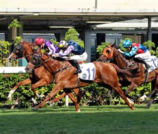 Italian jockey Umberto Rispoli partners Sharpmind (No.11), the first of his two wins at Happy Valley today, in the Class 4 Island Handicap (1200m).