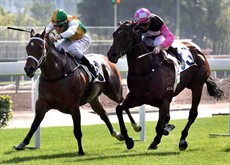 Sparkling Dragon (in green/yellow), ridden by Sam Clipperton, holds off Win Beauty Win (in pink) to take the Class 4 Granville Handicap