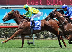 Race 3 looks like an action replay of the race here two weeks ago where Boom Boom Epic (3) beat home All Too Huiying On that occasion I was bullish about that result. This weekend I am swinging back to the Gary Moore trained All Too Huiying to reverse the result.