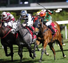 Rule Thee wins the night's stamina test under Chad Schofield.