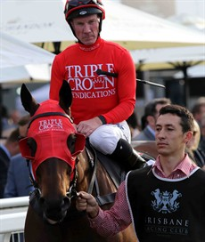 My Best Bet ... Redzel (see race 8)