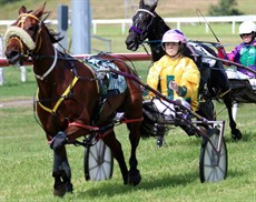 All the action starts around 10.30am when the first harness race is scheduled to take place! You will get great value for money for your $10 entry fee.