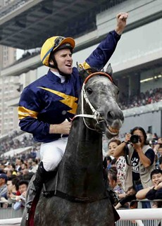 Chautauqua (Tommy Berry) returns to scale after storming home to win the G1 Chairman's Sprint Prize (1200m) – the final leg of Hong Kong Speed Series this season and the 4th leg of the 2016 Global Sprint Challenge - at Sha Tin on May 1, 2016, which was a major highlight of a fantastic career