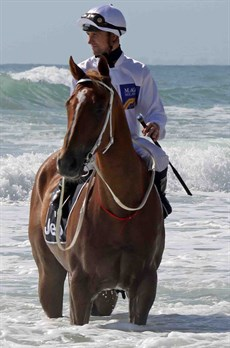 Tye Angland pictured at the Magic Millions beach gallops … a promotion he always supported