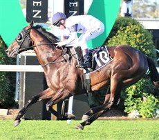 Jonker stops the clock in a new track record time at Doomben on Saturday