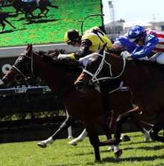 With Brad Stewart's whip rule protest being dismissed at Doomben on Saturday, even though it was established that the winner had breached the whip rule, the debate is on again. (Brad is in the blue cap)